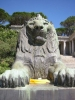 Yellow paper with lion, Cape Town 2003, by Lara Hoffenberg